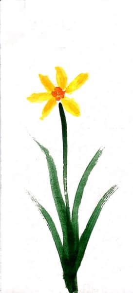 一輪の黄水仙