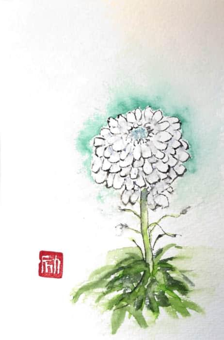 青みがかった白菊の花