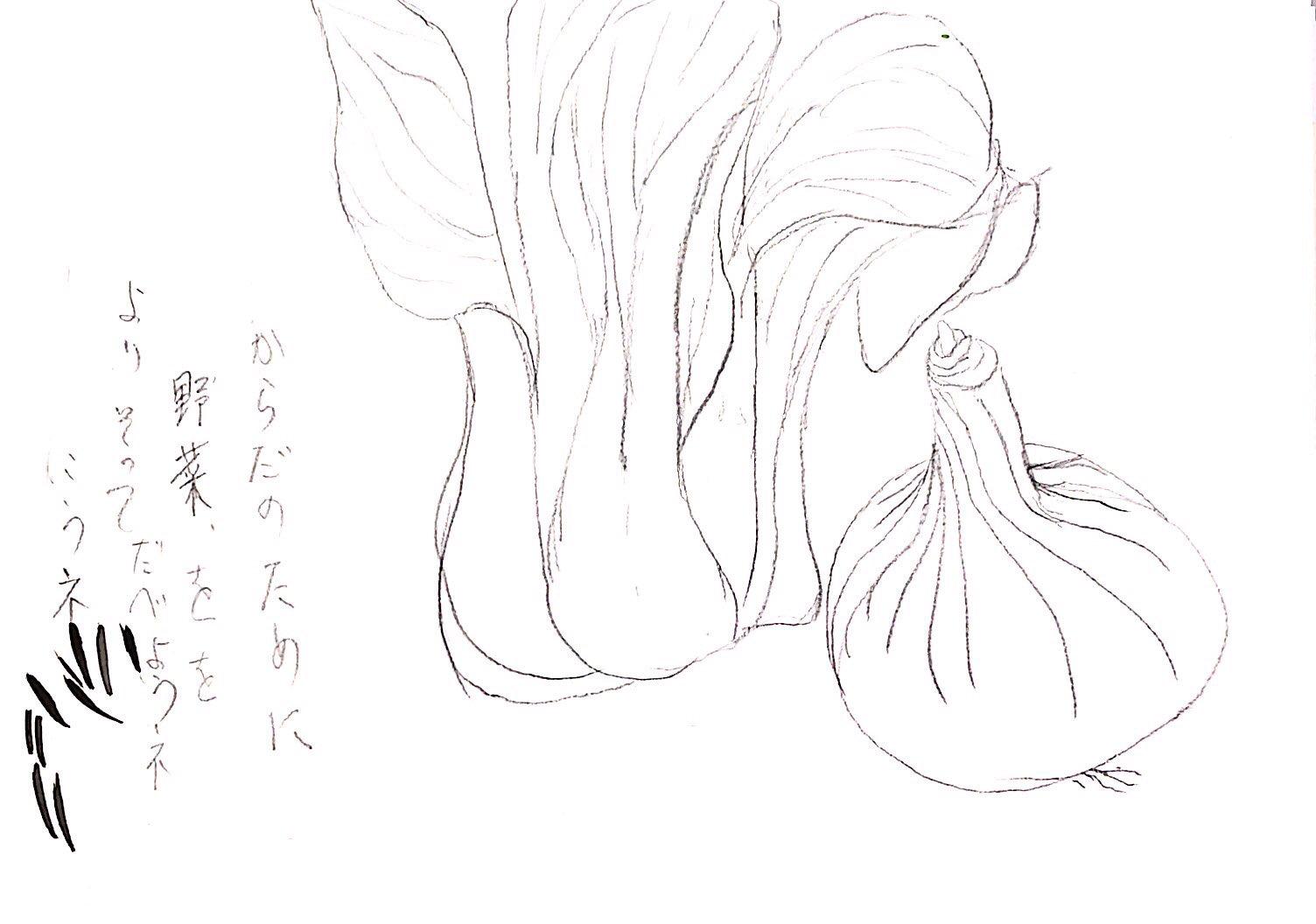 青梗菜と玉ねぎのデッサン