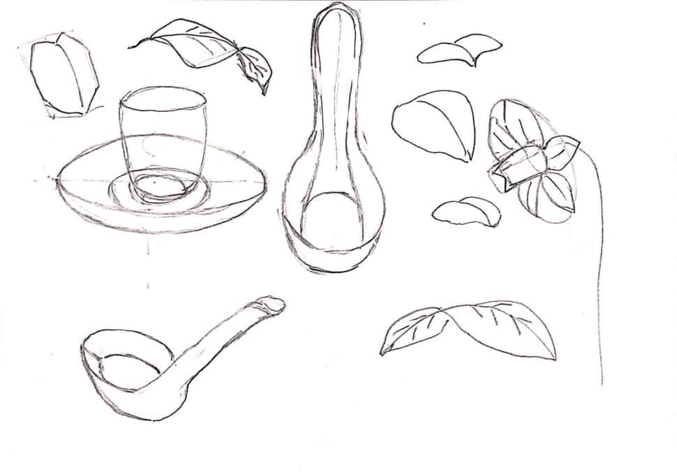 れんげや葉っぱのデッサン