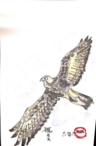 鷹になりたい!
