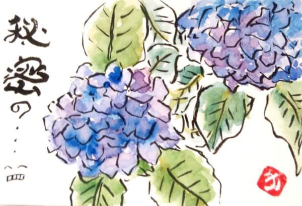 秘密の… あじさいの花
