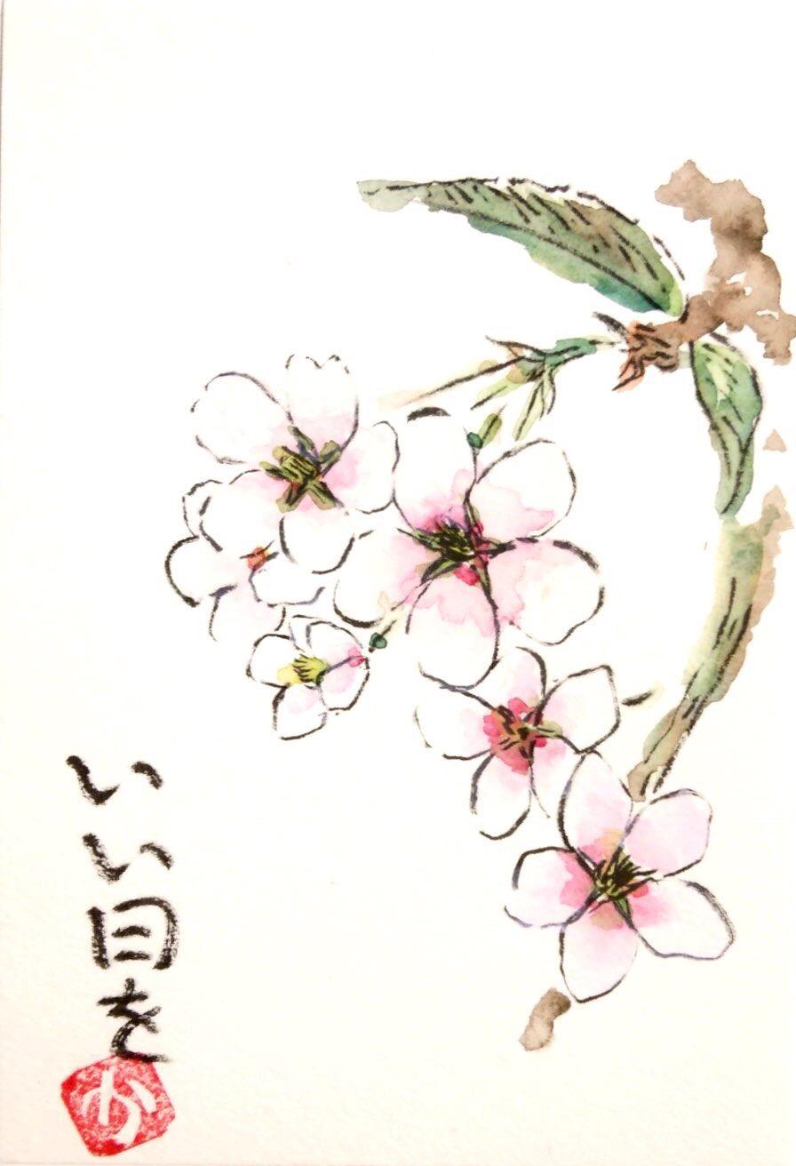 いい日 〜桜の花〜