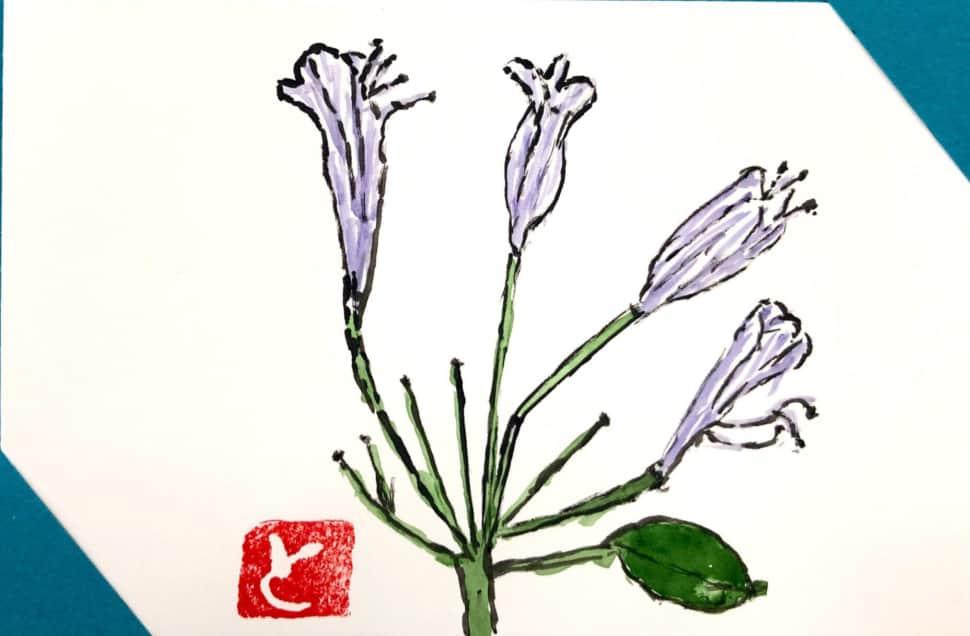 ブルーベルの花