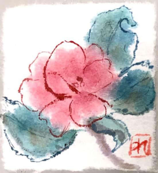 ピンクの椿の花