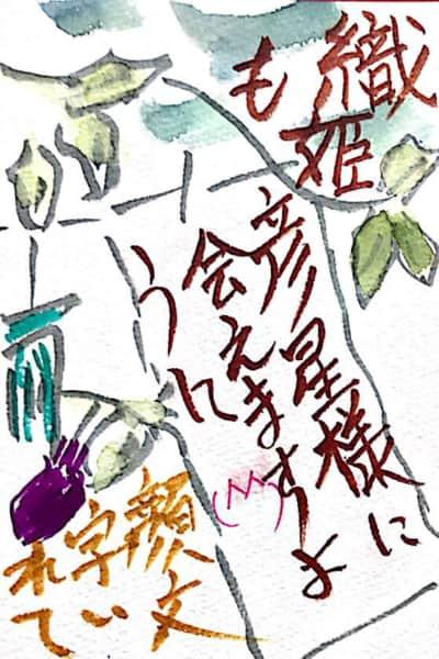 織姫も彦星様に会えますように 〜七夕の短冊〜