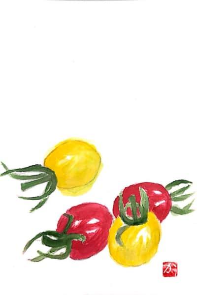 黄色と赤のミニトマト