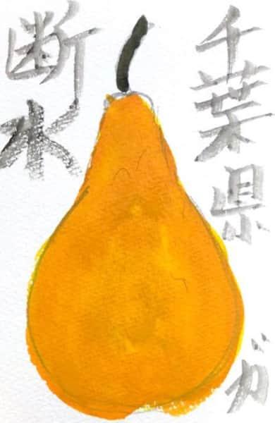千葉県で断水 〜梨〜