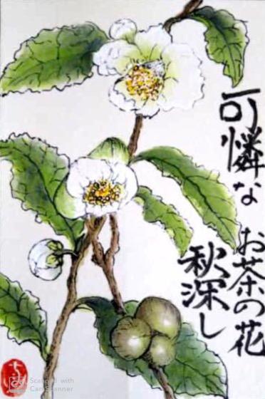 可憐なお茶の花