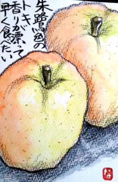朱鷺色のりんご