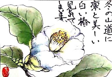 凜と美しい白い椿