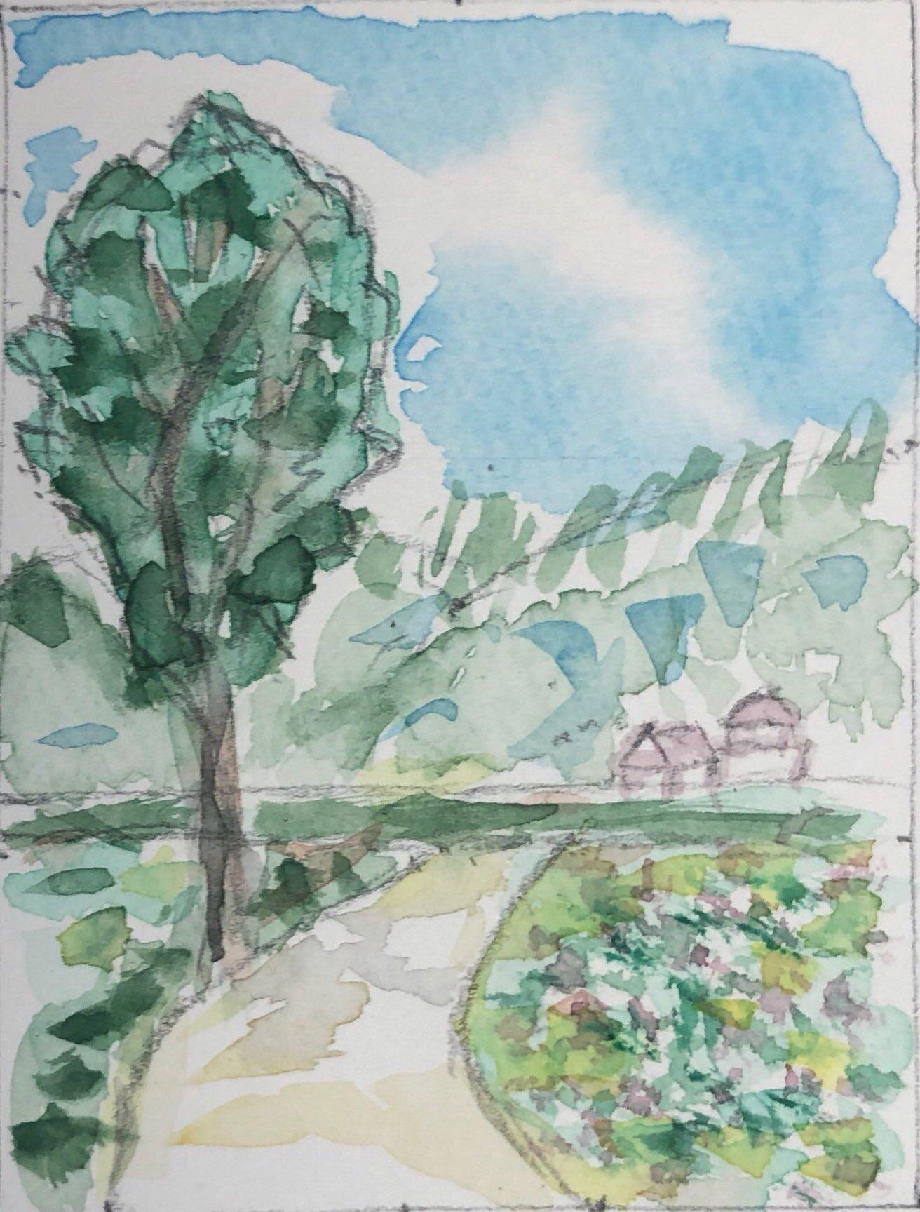 木のある道の風景