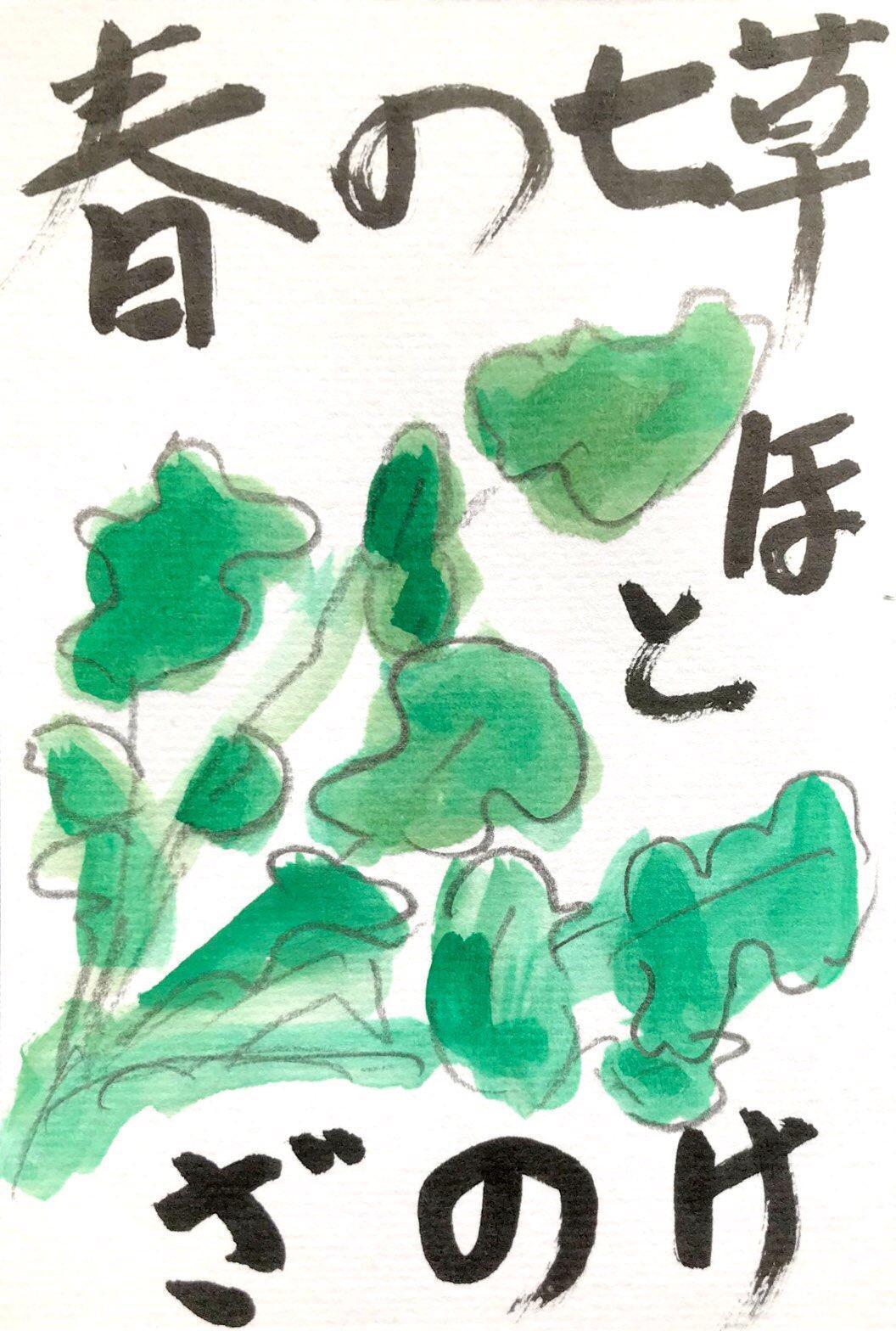 春の七草 ほとけのざ