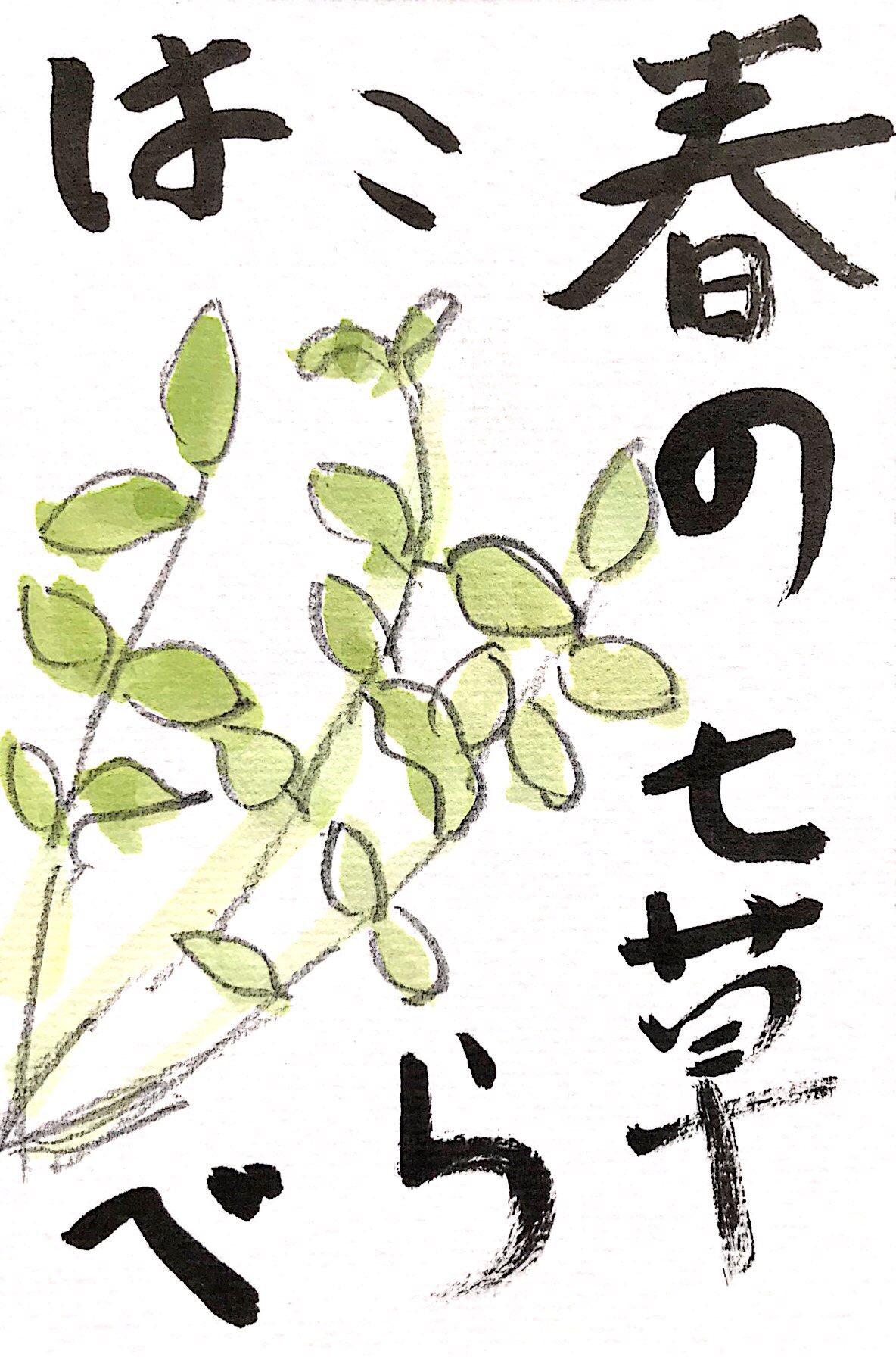 春の七草、はこべらの絵手紙