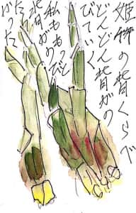 姫竹の背比べ