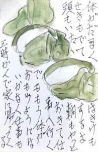 5月21日 柏餅の絵手紙