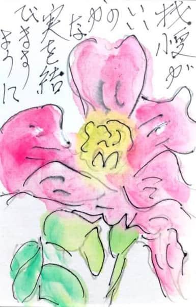 我慢がいいのかな 実を結びますように 〜ピンクの花〜
