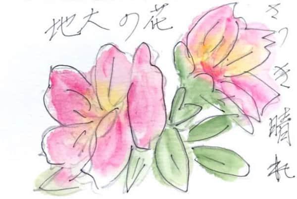 さつき晴れ 花の大地