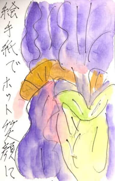 絵手紙でホット笑顔 ジャーマンアイリスの花