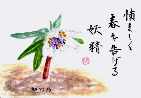 早春の草花