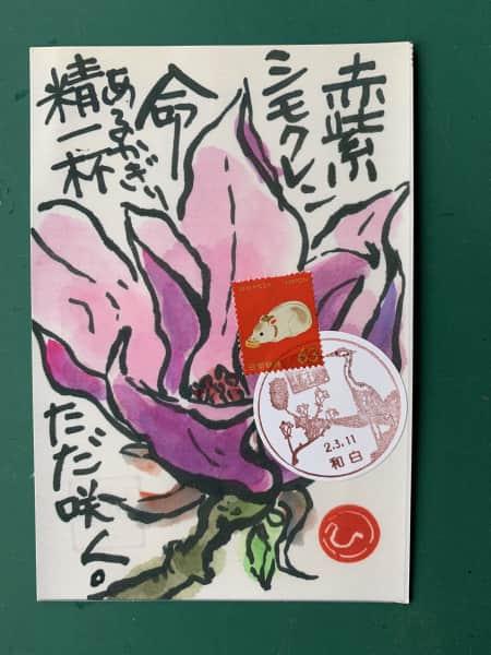 紫木蓮が咲いたよ❣️