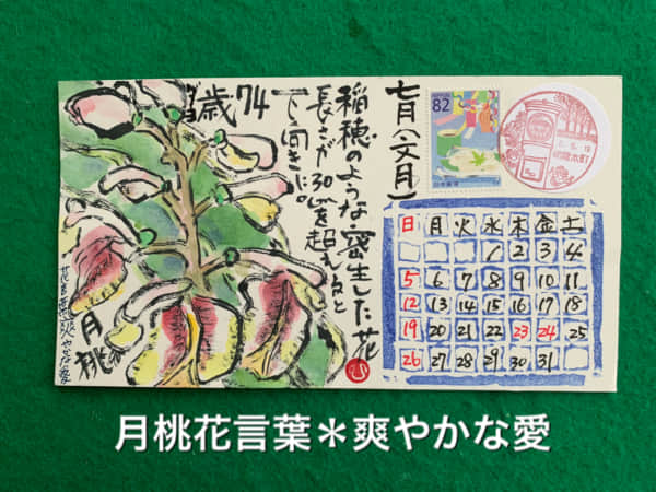 7月の絵手紙カレンダー