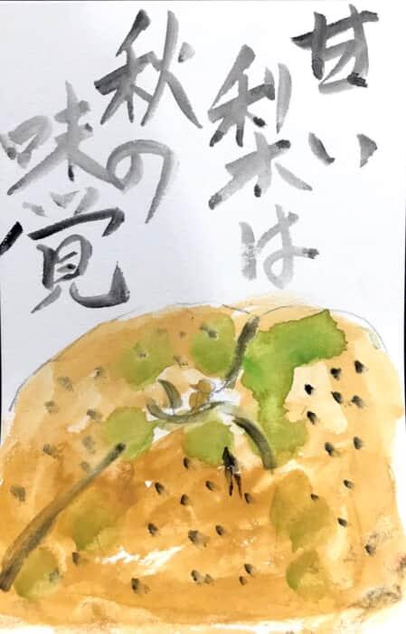 甘い梨は秋の味覚