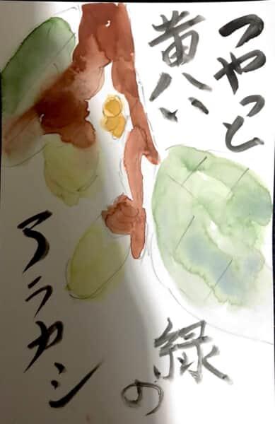 ツヤっと黄いろい緑のアラカシ