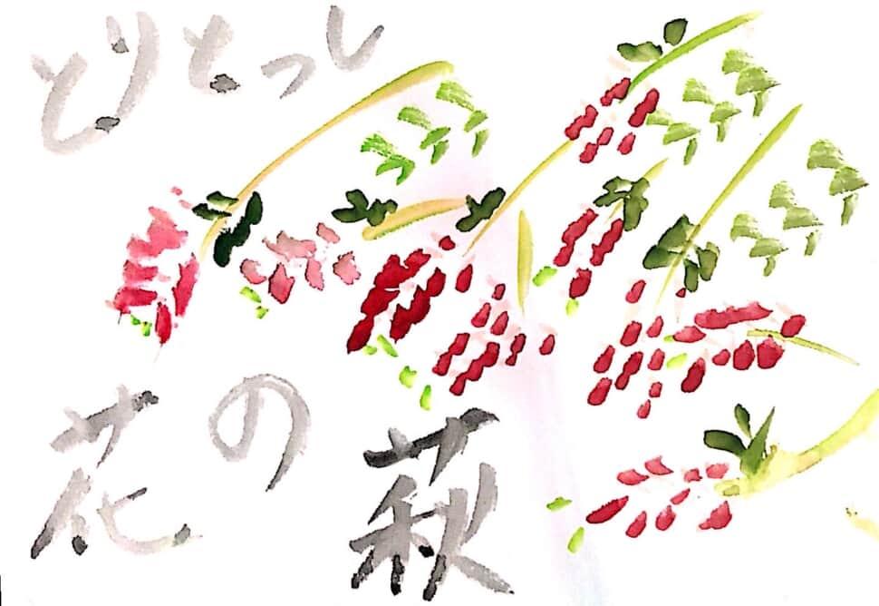 しっとり萩の花