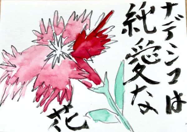 ナデシコは純粋な花