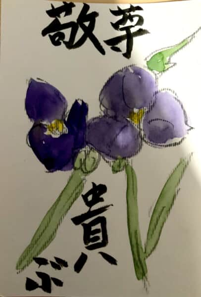 尊敬 貴ぶ 〜ムラサキツユクサの花言葉の絵手紙〜
