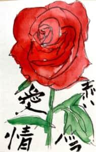 愛情 赤いバラの花言葉の絵手紙
