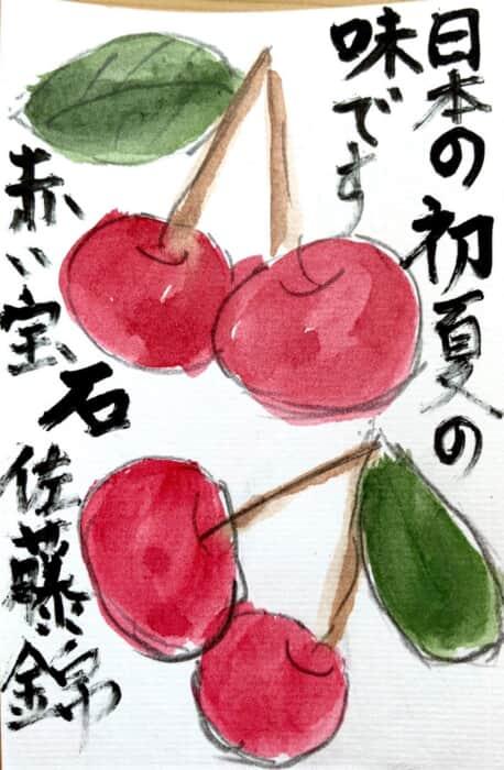 日本の初夏の味です 赤い宝石 佐藤錦