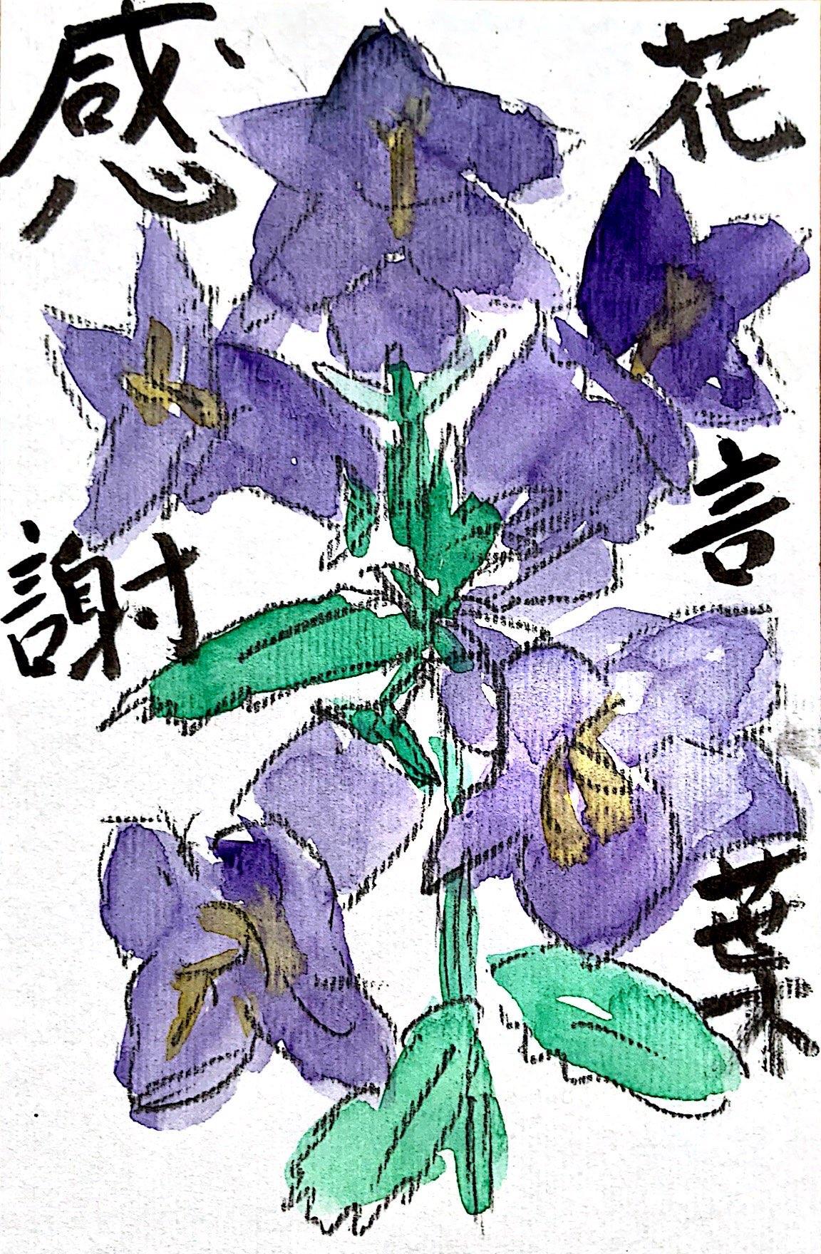 花言葉 感謝 〜カンパニュラの花〜