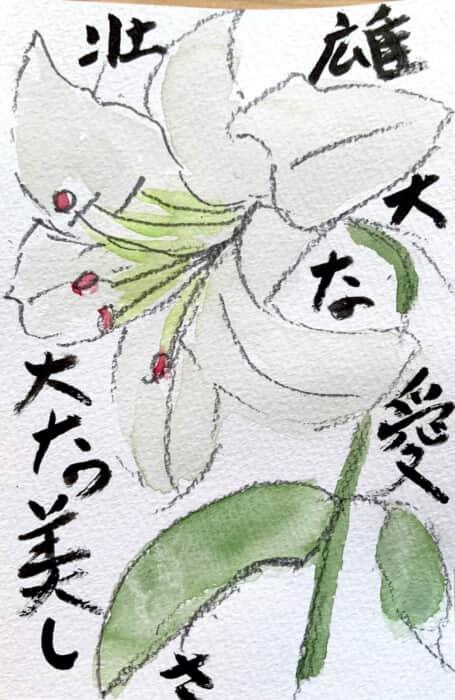 雄大な愛 壮大な美しさ 白い百合の花コトバ