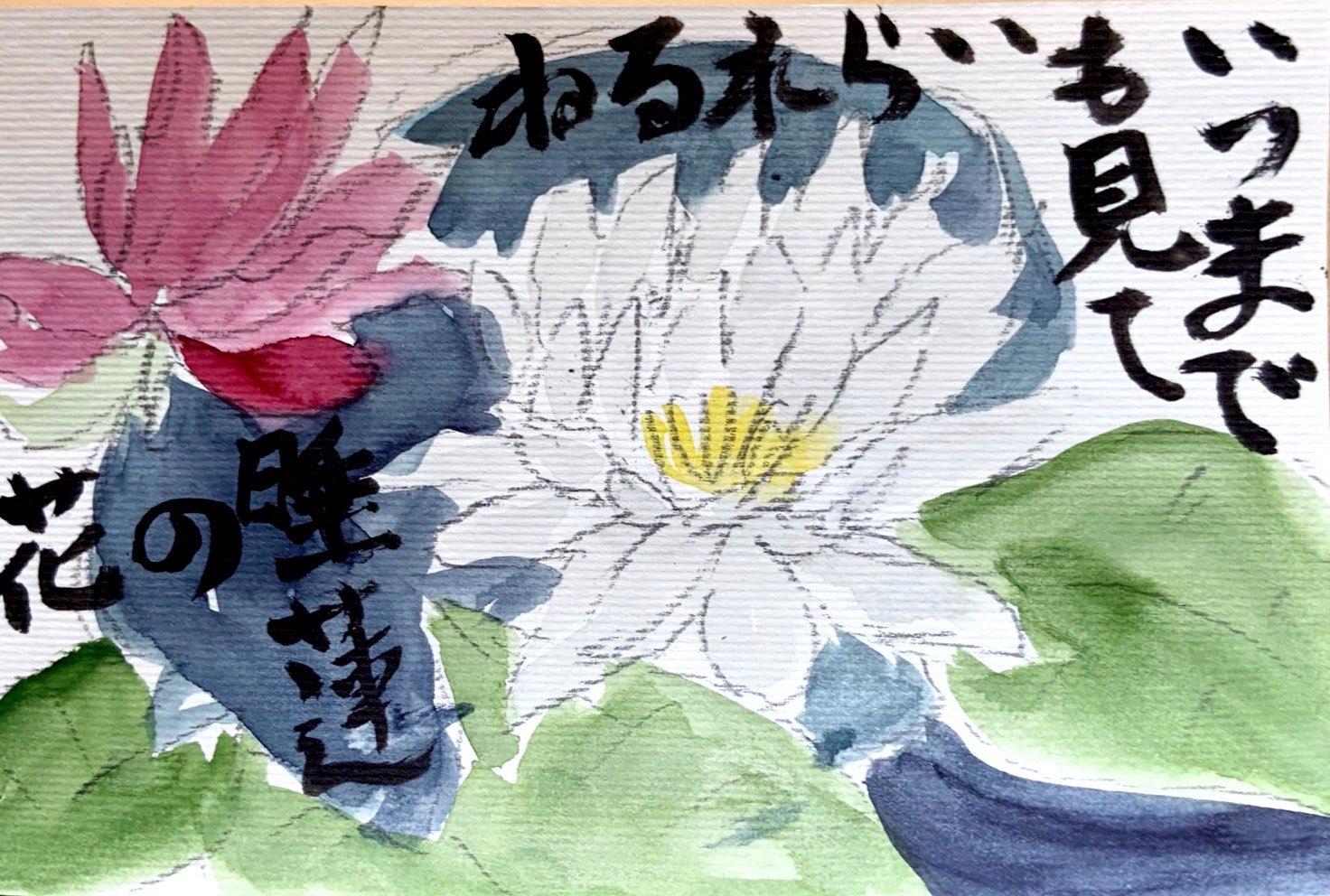 いつまでも見ていられるね 睡蓮の花
