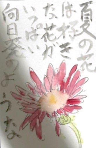 夏の花は好きな花がいっぱい 向日葵のような