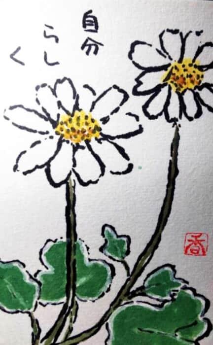 足摺野路菊