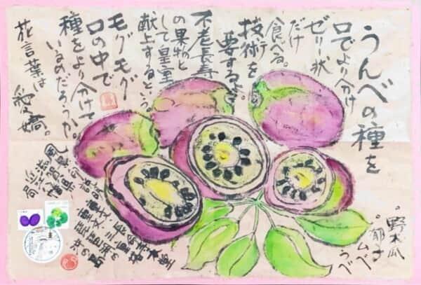 不老長寿の果物