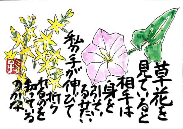 草花を見ていると相手は身を引いてるみたい 私の手が伸びて折られるのを知っているのかな