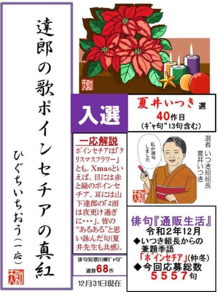 達郎の歌 ポインセチアの真紅(あか)
