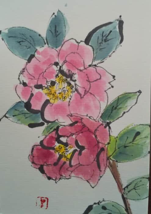 山茶花が咲いた