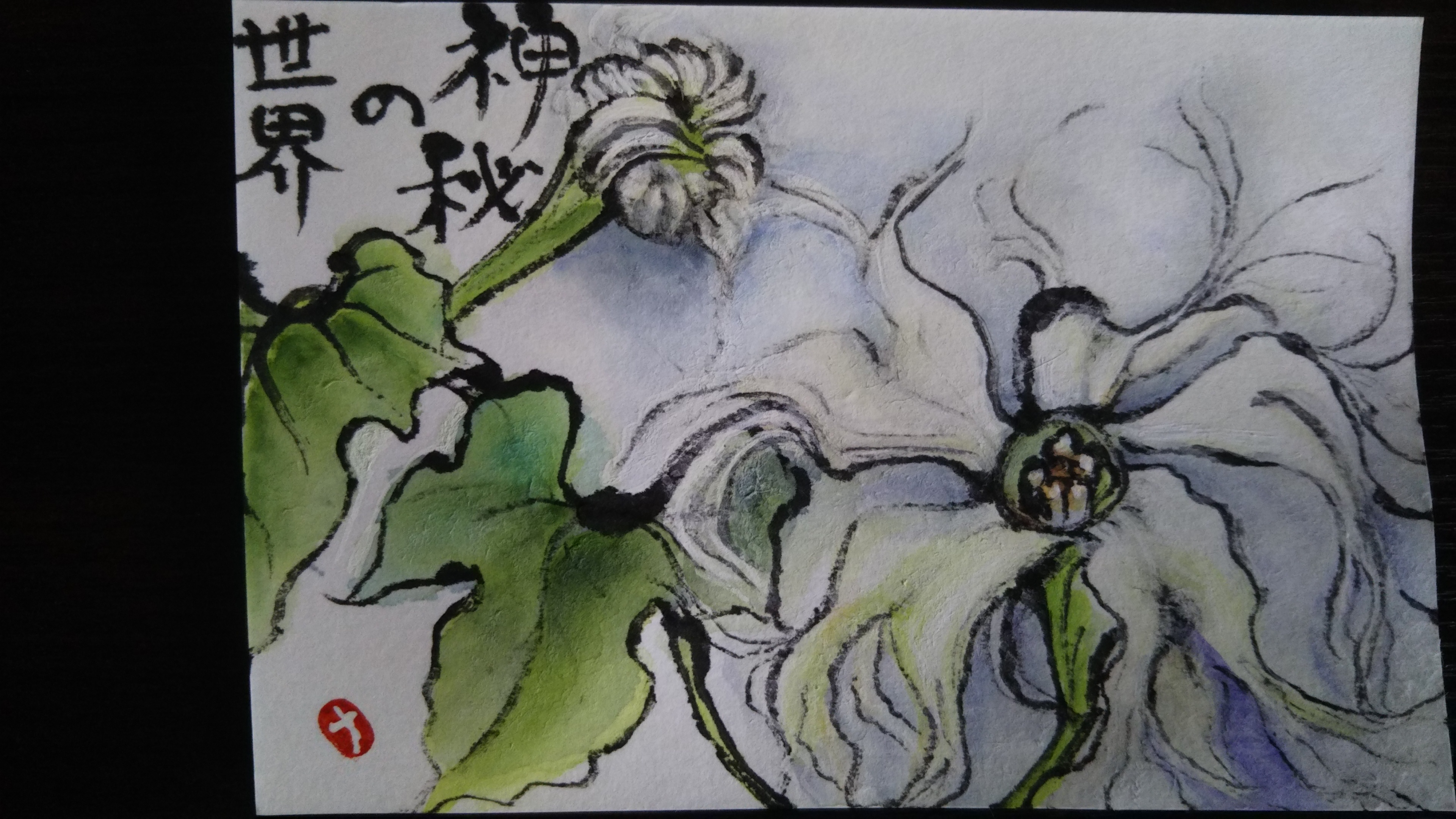 からす瓜の花