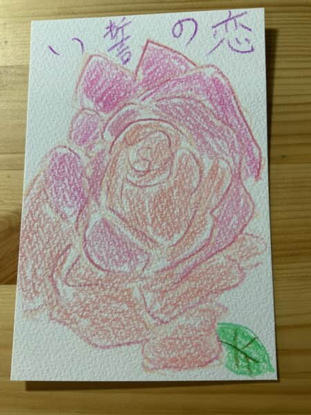 恋の誓い ~ピンクのバラの花言葉~