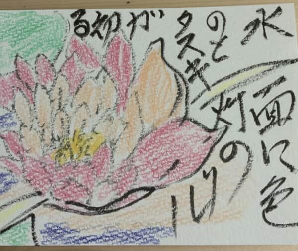 水面に色と灯のタスキリレーが始まる 〜睡蓮の花の絵手紙〜