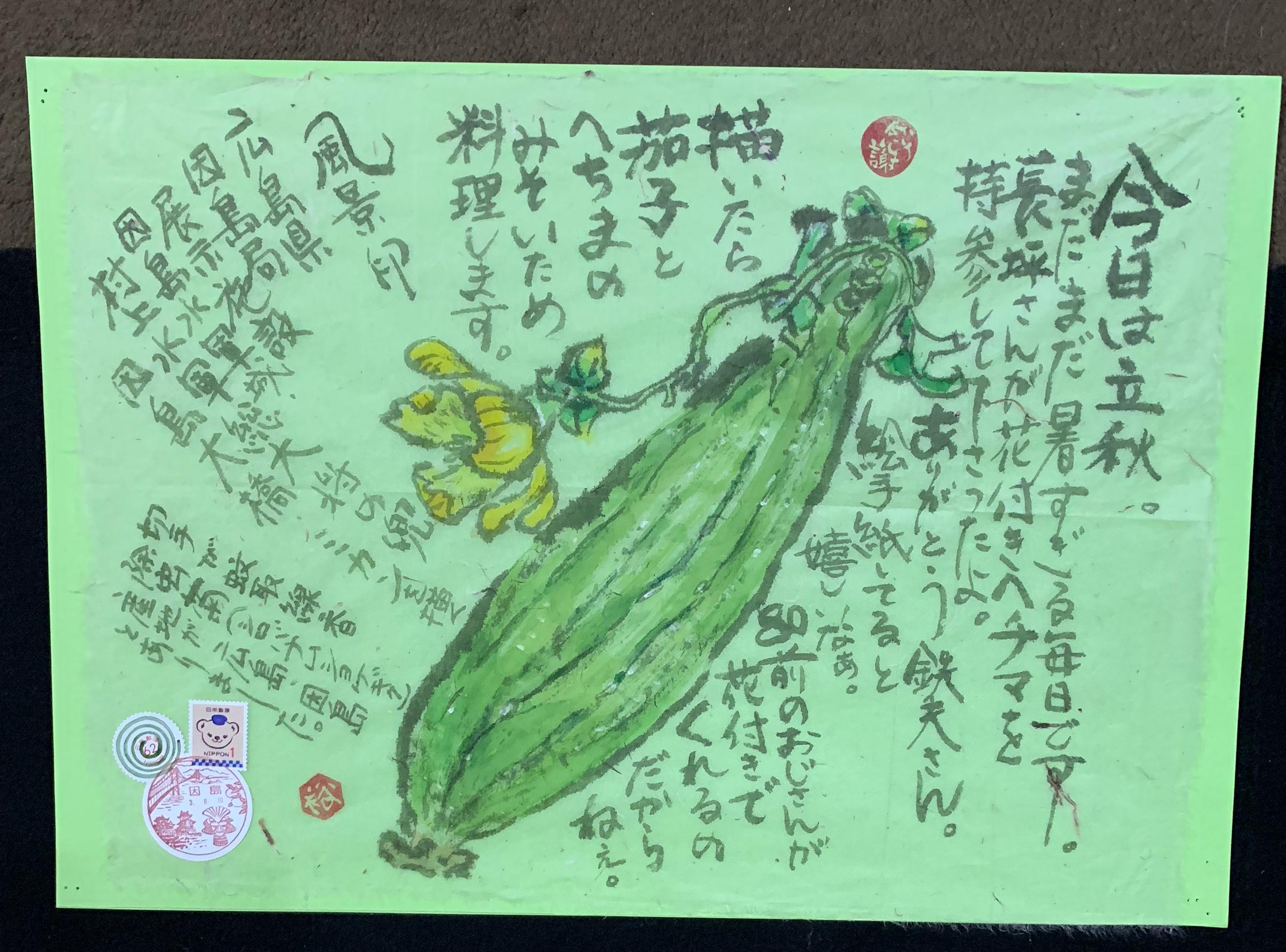 夏野菜のヘチマ