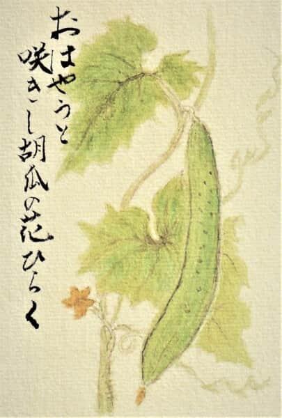 胡瓜・俳画